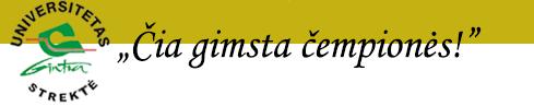 Gintra Strektė Universitetas